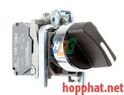 SELECTOR SWITCH - XB4BD21