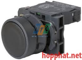 PUSHBUTTON BLACK - XB5AA21