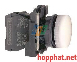 DIRECT SUPPLY PILOT LIGHT - XB5AV61